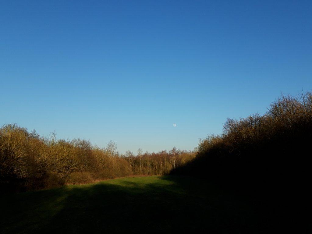 Veteranenlandgoed Vrijland - open vlakte - winternamiddag