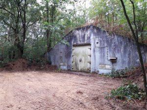 Veteranenlandgoed Vrijland - munitiebunker - vleermuizen