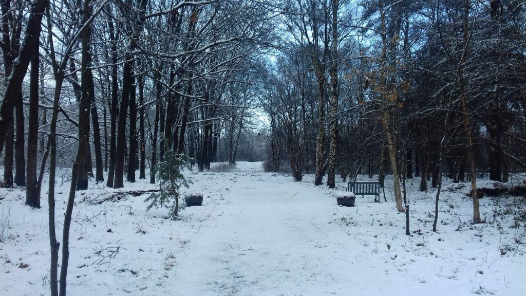 Veteranenlandgoed Vrijland - Verstrooiveld - winter - sneeuw